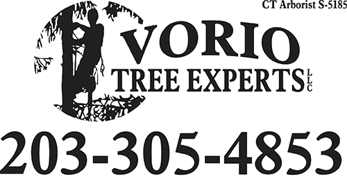 Vorio Tree Experts, LLC